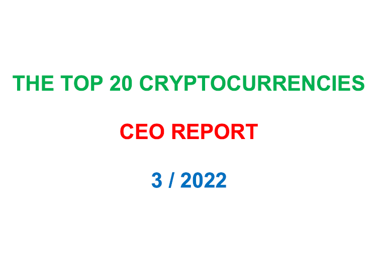 Top 20 Cryptocurrencies Report